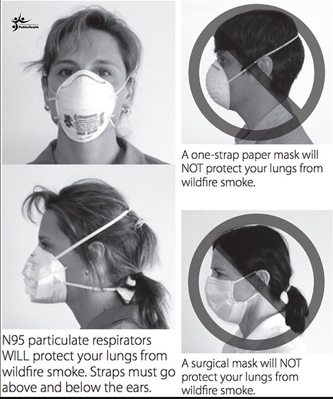 N95 Mask example
