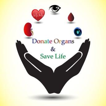 donate organs save life shutterstock_1092911654